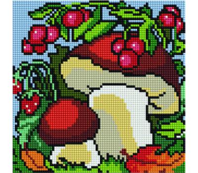Грибы и ягоды 20*20